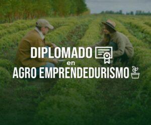 Diplomado en Agro-Emprendedurismo